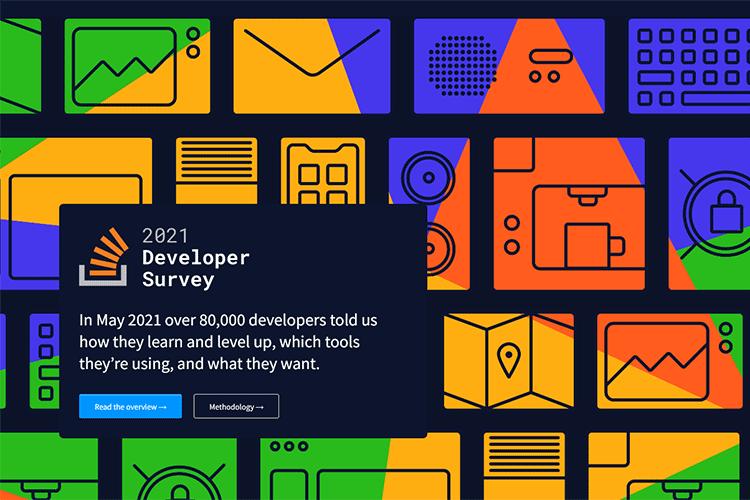 Example from 2021 Developer Survey